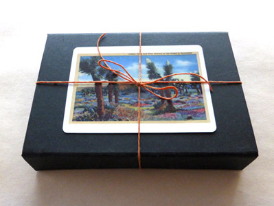 The Spark - An (Animated) Artist's Book by Carol Es - inside the box with joshua tree playing card and bow